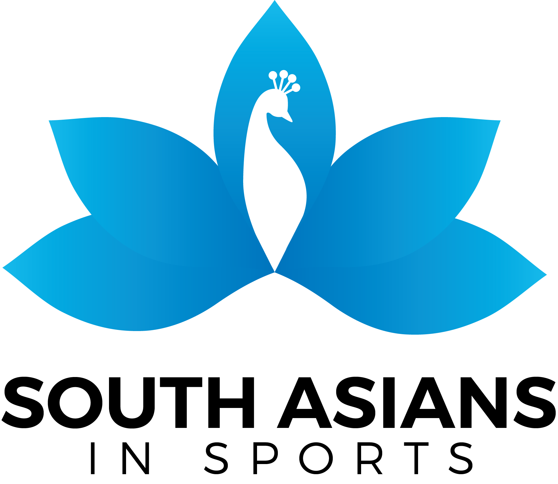 South Asians in Sports – A Panel Discussion